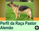 PERFIL DA RAÇA DE CÃES: PASTOR ALEMÃO