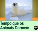 QUANTAS HORAS CADA ANIMAL DORME POR DIA