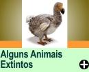 ALGUNS ANIMAIS EXTINTOS