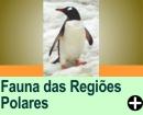 A FAUNA DAS REGIÕES POLARES - A FAUNA DAS REGIÕES POLARES - Continuação