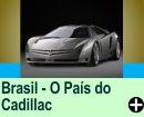 BRASIL O PAÍS DO