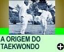 A ORIGEM DO TAEKWONDO
