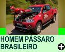 LUIGE CANI - O HOMEM PÁSSARO BRASILEIRO