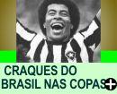 0S 10 MAIORES CRAQUES DO BRASIL NAS COPAS
