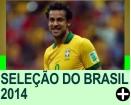 OS CONVOCADOS DO BRASIL PARA A COPA 2014