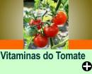 VITAMINAS ENCONTRADAS NO TOMATE