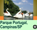 PARQUE PORTUGAL, EM CAMPINAS/SP