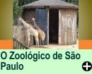 O ZOOLÓGICO DE SÃO PAULO/SP