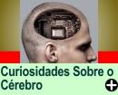 CURIOSIDADES SOBRE O CÉREBRO