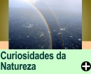 CURIOSIDADES DA NATUREZA