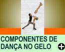 COMPONENTES DA COMPETIÇÃO DE DANÇA NO GELO