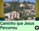 O CAMINHO QUE JESUS PERCORREU