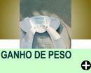 GANHO DE PESO NÃO SIGNIFICA GANHO DE GORDURA