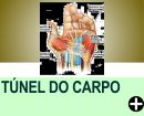 O QUE ÉSÍNNDROME DO TÚNEL DO CARPO?