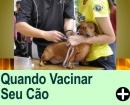 QUANDO VACINAR SEU ANIMAL