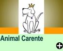 COMO LIVRAR SEU ANIMAL DA CAR�NCIA AFETIVA