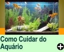 COMO CUIDAR DE SEU AQU�RIO