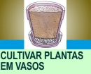 COMO CULTIVAR PLANTAS EM VASOS