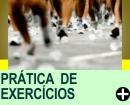 PRÁTICA ADEQUADA DE EXERCÍCIOS