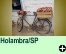 Holambra/SP