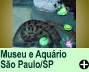 MUSEU CATSVENTO E AQU�RIO DE S�O PAULO/SP