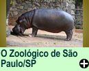 ZOOLÓGICO DE SÃO PAULO/SP