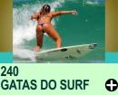 Gatas do Surf