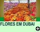TAPETE DE FLORES EM DUBAI