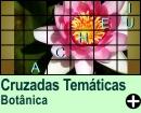 Cruzadas Temáticas de Botânica