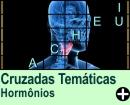 Cruzadas Temáticas de Hormônios