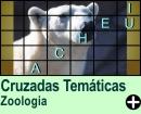 Cruzadas Temáticas de Zoologia