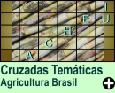 Cruzadas Temáticas de Agricultura Brasileira