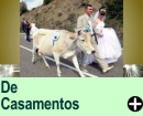 Piadas de Casamento