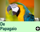 Piadas de Papagaio