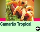 CAMAR�O TROPICAL
