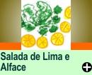 SALADA DE LIMA E ALFACE