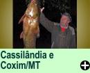 Cassil�ndia e Coxim/MG